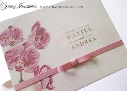 Daniel & Andrea